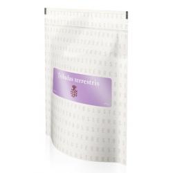 Tribulus terrestris bylinný čaj Energy