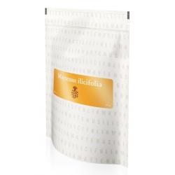 Maytenus ilicifolia bylinný čaj Energy