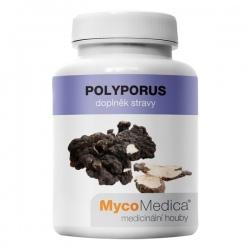 Polyporus extrakt z plodnice 90 kapsúl x 500mg MycoMedica (30% polysacharidov)