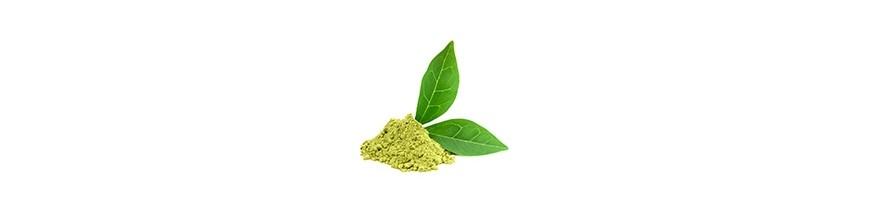 Matcha zelený čaj