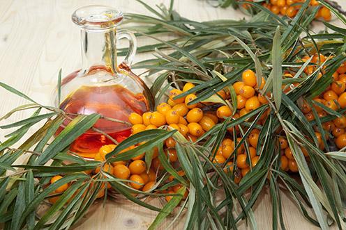 Rakytníkový olej s plodmi rakytníka
