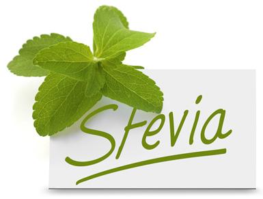 Stévia sladká - lístky