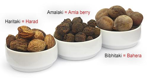 plody Amalaki - Amla, Haritaki a Bibhitaki