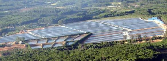 Spirulina, pestovateľské nádrže - farma